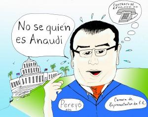 EL REPRESENTANTE PEREYO NEGANDO A ANAUDI HERNANDEZ Y EL CONTRATO TELEFÓNICO DEL CAPITOLIO.