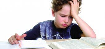 LOS PROBLEMAS DE LOS PROBLEMAS DE APRENDIZAJE (LEARNING DISABILITIES)
