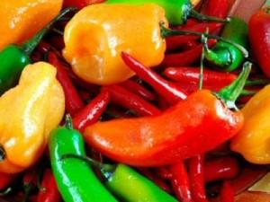 Hablemos de Chiles y Ajíes: Camarones al Tequila y Salmón con Salsa Verde