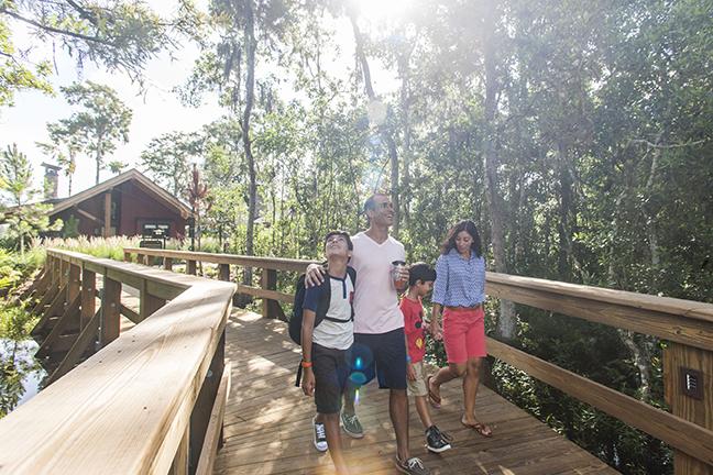 Debuta nueva opción de alojamiento familiar en Disney World