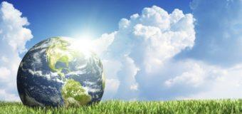 Los Jardineros y Paisajistas: Principales Cuidadores de la Tierra