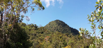 Tambillo, primera Área Natural Protegida Comunitaria del Ecuador, se abre al turismo