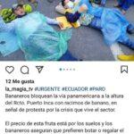 Productores bananeros se apostaron en las carreteras en protesta por los bajos precios del banano
